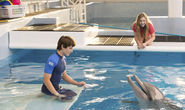 Dolphin Tale 2 Is a Warm, Wise Animal Tale