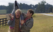 Dumb and Dumber To Is Missing the Original's Magic Idiocy