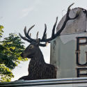 Goodbye to The Stag's Head