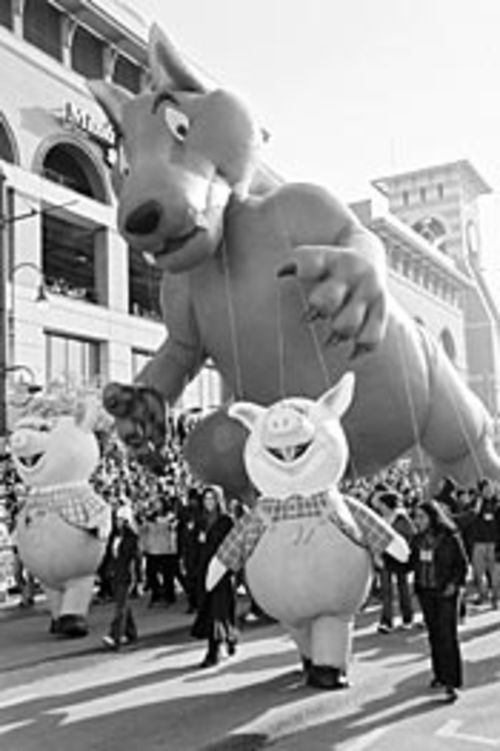 Pigs and dogs play together at the parade.