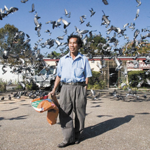 You can't get a lot of pigeon shit unless you feed the pigeons. So Vichien, who only wanted his first name used, has been feeding pigeons at 4404 Richmond for ten years or so. He must either move fast or have a standing account at the dry cleaners. To view image larger, click here.