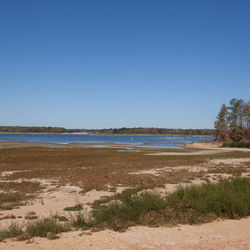 Martin Lake, just down the road from Dirgin, has all but dried up. The drought forced its boat ramps to close by Easter of last year.