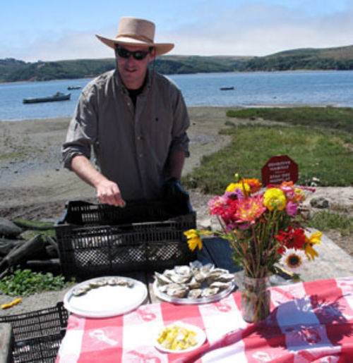 Hog Island's picnic grove makes a gorgeous setting for shucking oysters and drinking wine.