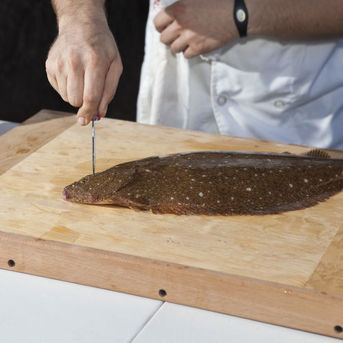 2. Fisch starts by spiking the flounder's small brain, killing it instantly. This ensures the fish doesn't experience pain or stress during the ike jime process.