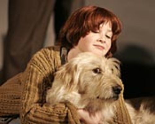 Marissa O'Donnell is irresistible as Annie.