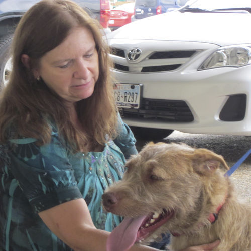 Carol Goodrich of San Antonio was among the first to reclaim their dog (Jasper) six days after the seizure.