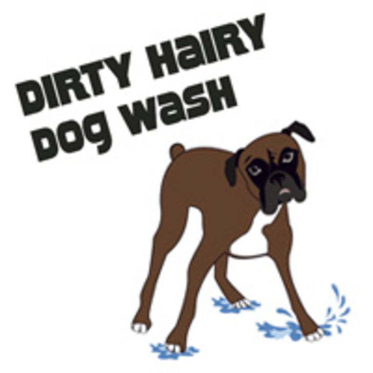 Dirty Hairy Dog Wash