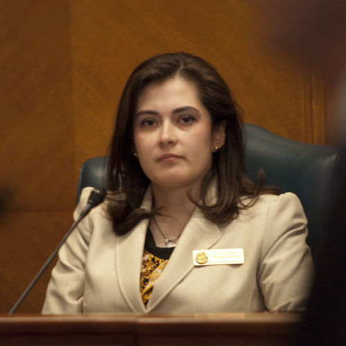 No United Nations conspiracy can get past Houston Councilwoman Helena Brown.