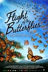 Flight of the Butterflies in 3D