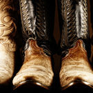 The Big Show Is Back: Your Guide to the Houston Livestock Show and Rodeo 2014