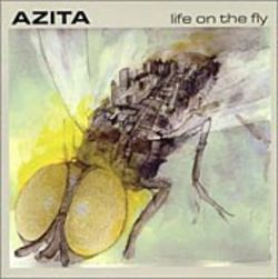 Azita's Fly creates a warm pop-jazz buzz.