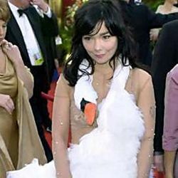Can you wear a dead swan at 40?