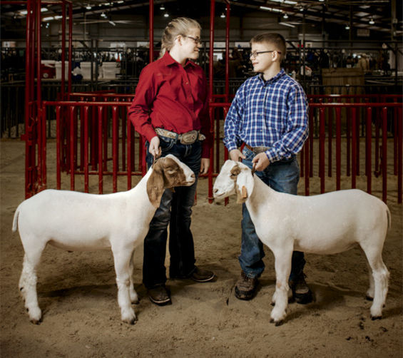 Blindness Won't Stop These Twins From Showing Their Goats at the Rodeo