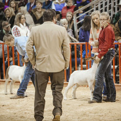 Faith Snapp couldn't see where the judge was standing in the ring, but she looked where her spotter, Lindsey Cobb, 17, told her to, so it appeared Faith was staring down the judge.