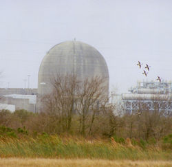 The South Texas Nuclear Plant produces electricity without causing global warming...