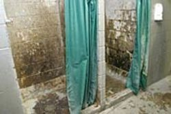 Cabbieville&#039;s two showers, which serve hundreds of 