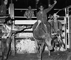 Eleven-year-old Richard rides his first bull at Johnny  Nash Arena.