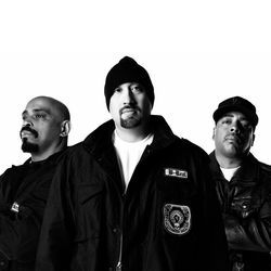 Cypress Hill has been exhaling sticky beats for more than 20 years now.
