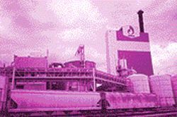 The Donohue paper mill: Facts or fiction?