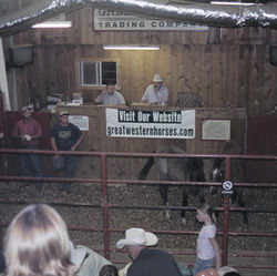 Rescue workers worry that some horses sold at the Great Western Trading Company auction in Magnolia end up at slaughterhouses.