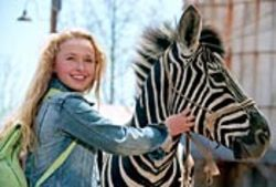 Flat-out boring: Hayden Panettiere as Channing and  Frankie Muniz as the voice of Stripes.