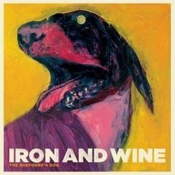 Iron & Wine: both comforting and disquieting.