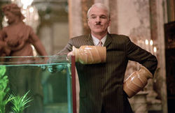 Steve Martin has some high comic moments, but 