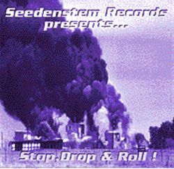 Seedenstem Records' new compilation is one worth repeated listening.