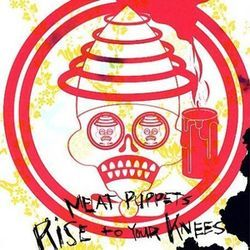 Meat Puppets: Rise to the occasion.