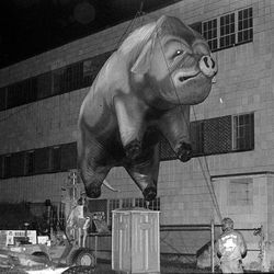 Workers guide the inflatable pig from Pink Floyd's 1977 In the Flesh tour into Robertson Stadium, then called Jeppesen Stadium.