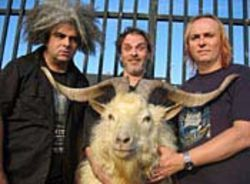 The Melvins and friend