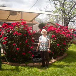 Rose took over Rose Garden, where she tends a real rose garden, in 1991.