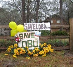 Residents throughout the subdivision signed petitions and posted homemade signs of support for Lobo.