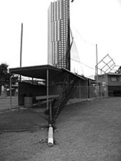 The ball fields may be state-of-the-art, but the facilities have some problems. High winds took down this pole and fencing.
