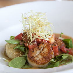 The diver scallops are a favorite.