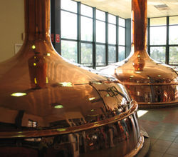 Copper tanks reflect guests and employees at the Shiner brew house.