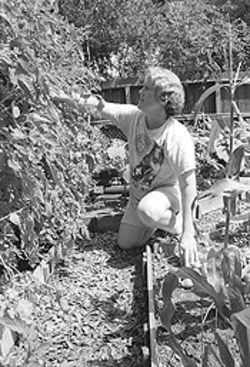 Tending her own garden: Phyllis cultivates relationships by staying rooted in her beliefs.
