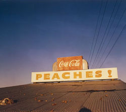 William Eggleston captured the perfect combo: Coca-Cola and peaches.