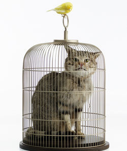 Not for sale: This work by Eva and Franco Mattes — or is it Maurizio Cattelan?