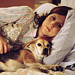 Molly Shannon plays a hypersensitive animal lover.