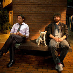 Peter and Ethan (Robert Downey Jr. and Zach Galifianakis) get kicked off a plane and drive across the country together.